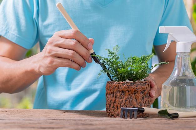 Ludzie sadzący drzewa w doniczkach koncepcja miłości rośliny kochają środowisko