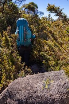 Ludzie spacerujący z wielkimi plecakami w górskim krajobrazie - trekking piesze wędrówki górskie w mantiqueira brazylia