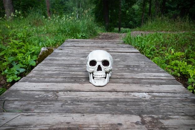 Ludzka czaszka na szarej podłodze z desek wśród zielonej trawy.