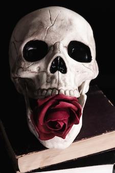 Ludzka czaszka z różą na książkach