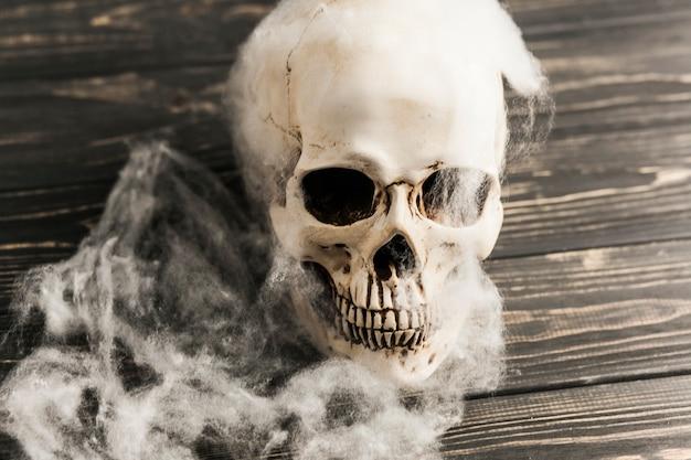 Ludzka czaszka z watoliną