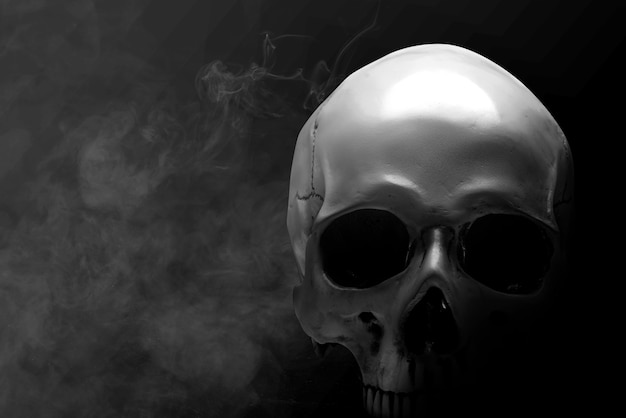 Ludzka czaszka