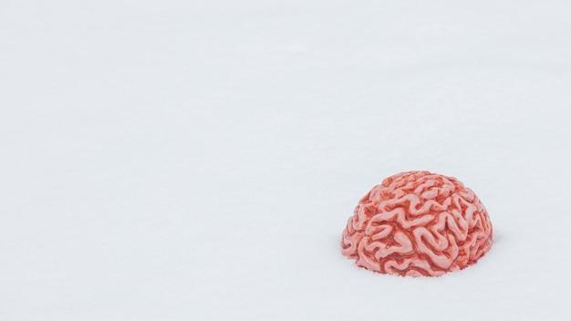 Ludzki mózg w śniegu w zimie.