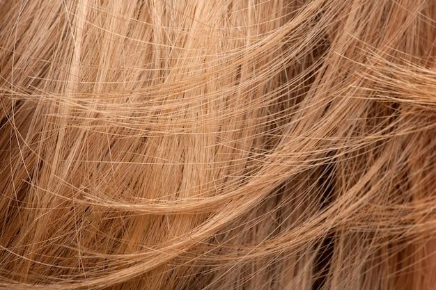 Ludzki włos