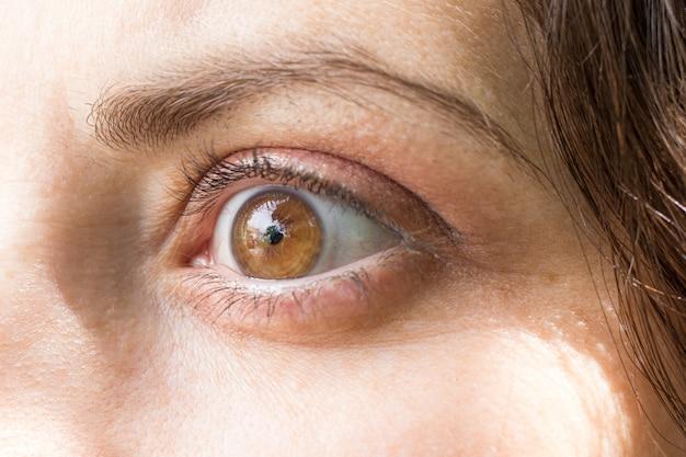 Ludzkie oko z makro makro obiektywu.