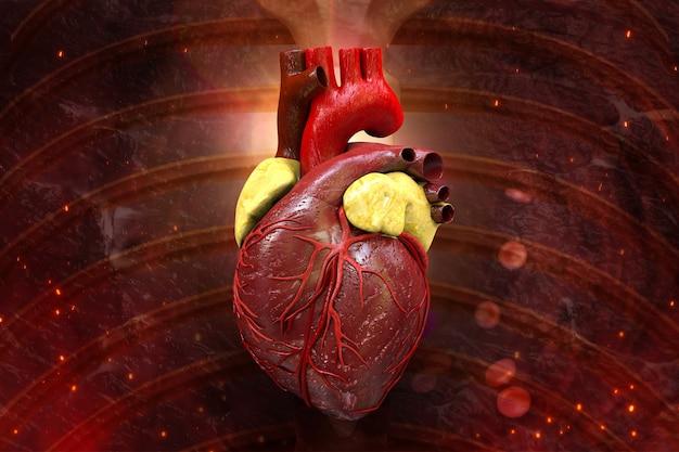 Ludzkie serce wewnątrz ciała ilustracja 3d