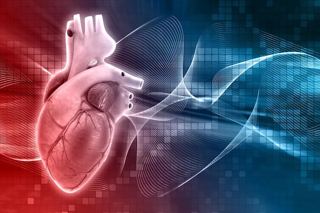 Ludzkie serce wzór