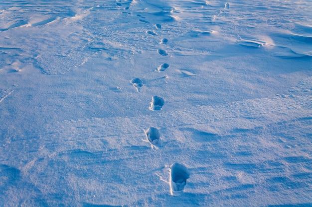 Ludzkie ślady na czystym śniegu.