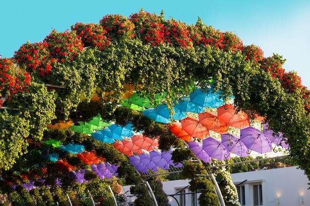 Łuk wielobarwnych parasoli i czerwonych petunii