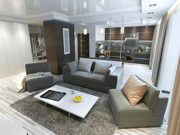 Luksusowe studio w nowoczesnym stylu z wygodnymi fotelami i sofą w kolorze oliwkowym. kawalerka z kuchnią i pokojem dziennym oraz przedpokojem z garderobą. renderowania 3d.