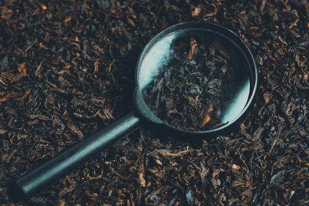 Lupa leży na herbacie. stonowanych pojęcie wyszukiwania wymaga różnorodności.
