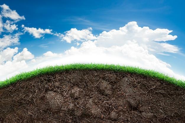 Luźna gleba i zielona trawa na niebieskim niebie