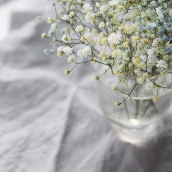 Łyszczec inny kolor piękny bukiet mieszanych kwiatów w szkle na szarym tle