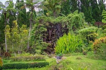 Mężczyzna zrobił sztucznemu siklawie otaczającemu z drzewami.