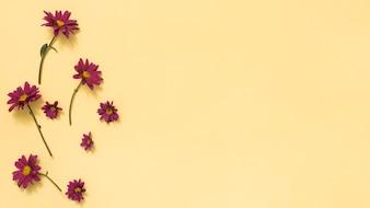 Małe różowe kwiaty rozproszone na stole