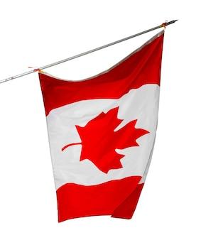 Macha flagą narodową kanady na białym tle