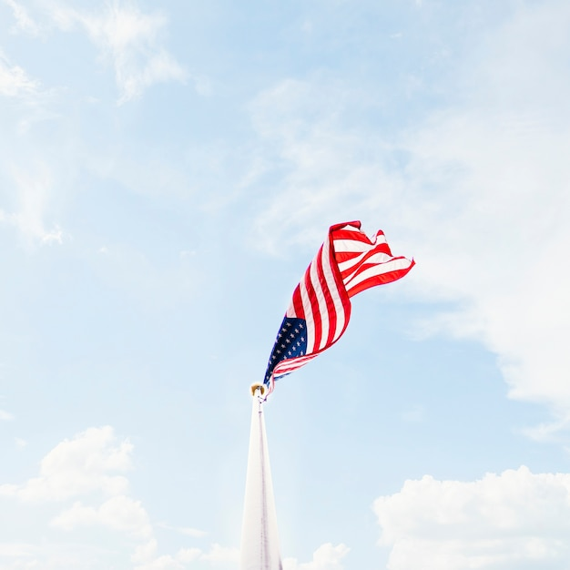 Macha flagą usa