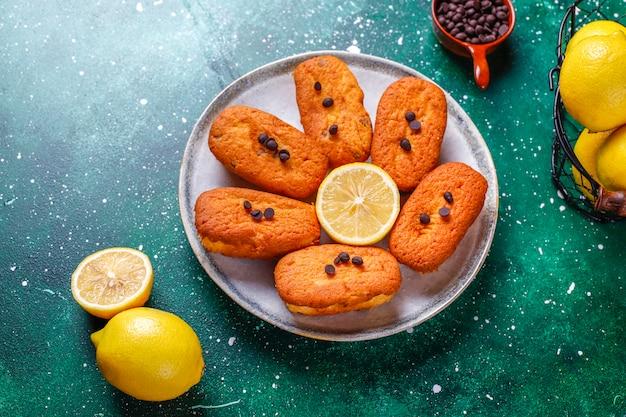 Madeleine - domowe tradycyjne francuskie ciasteczka z kawałkami cytryny i czekolady.