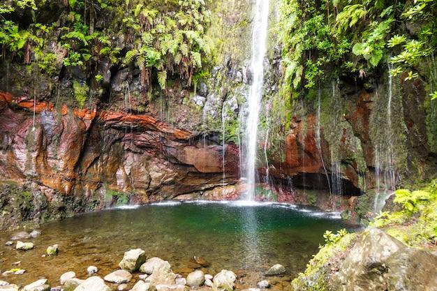 Madera piękny krajobraz natura, szlak pieszy w górach i lesie