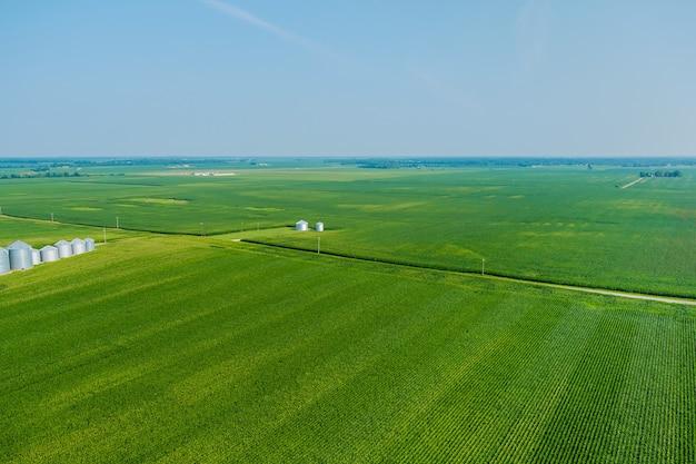 Magazyn produktów rolnych z podnośnikiem rolniczym na srebrnych silosach do przetwarzania, suszenia, czyszczenia wokół zielonych pól z panoramicznym widokiem