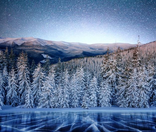 Magiczne zimowe drzewo pokryte śniegiem. zimowy krajobraz. zimowe jezioro jest zamarznięte z przodu