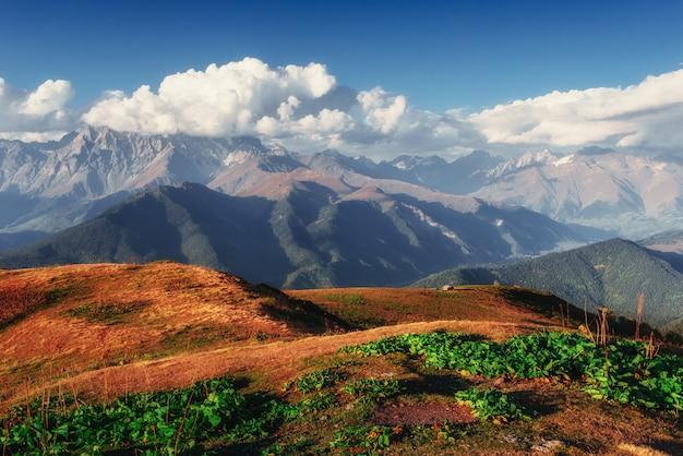 Magiczny jesienny krajobraz i ośnieżone szczyty górskie.