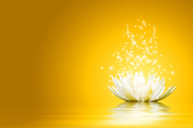 Magiczny kwiat lotosu