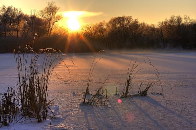 Magiczny śnieżny krajobraz złote słońce