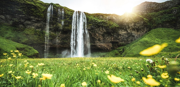 Magiczny wodospad seljalandsfoss na islandii.