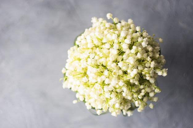 Maja lily