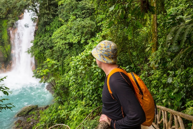 Majestatyczny wodospad w dżungli tropikalnej kostaryki.