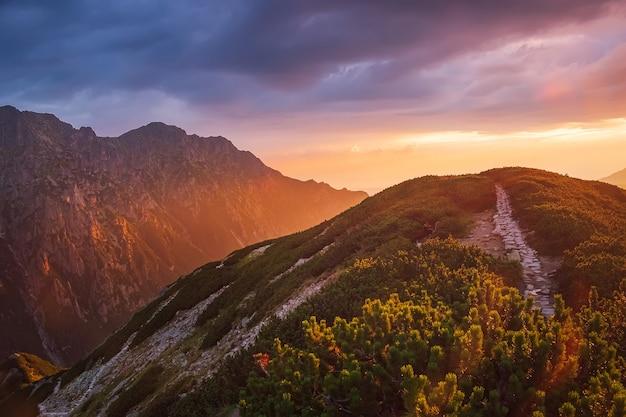 Majestatyczny złoty zachód słońca ze słonecznymi belkami w dużych górskich krajobrazach. park narodowy wysokie tatry, polska