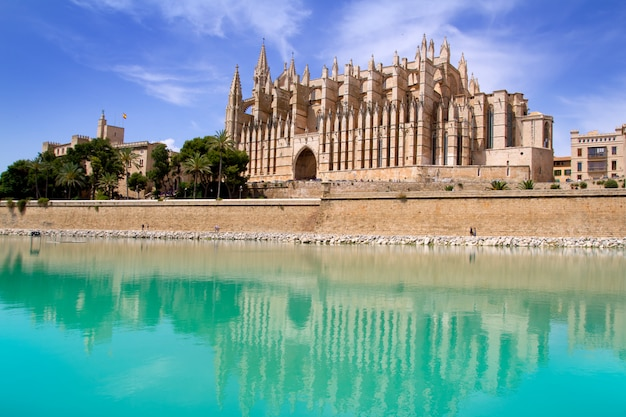 Majorca la seu katedra i almudaina z palmy