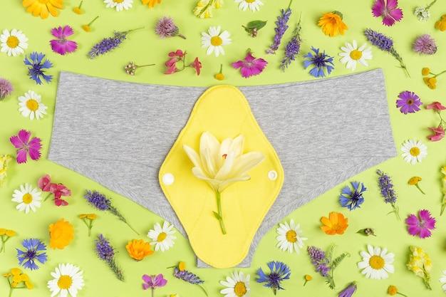 Majtki i bambusowy węgiel zmywalny podpaski na zielonym tle z kolorowymi kwiatami. zdrowa damska podpaska higieniczna, wielorazowa podpaska menstruacyjna. opieka zdrowotna, zero odpadów, ekologiczna koncepcja.