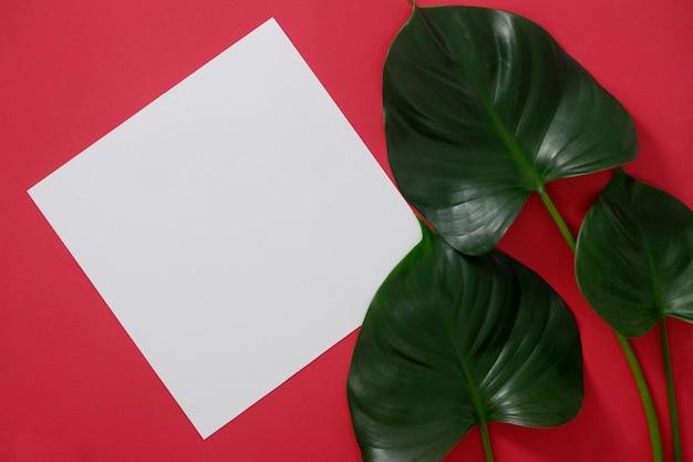 Makieta biały papier z miejscem na tekst lub obraz na czerwonym tle i liści tropikalnych.
