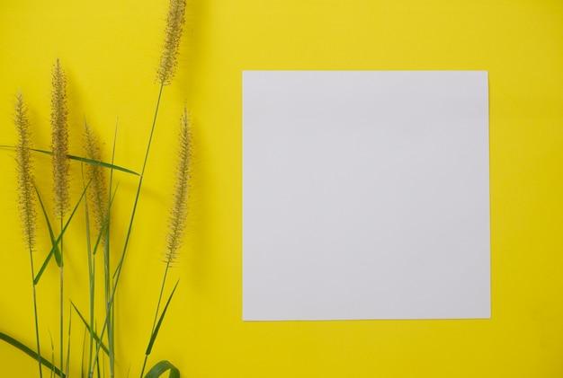 Makieta biały papier z miejscem na tekst lub obraz na żółtym tle i kwiat.