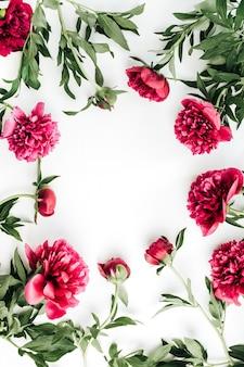 Makieta kwiatów różowej piwonii z miejscem na tekst. płaski układanie, widok z góry
