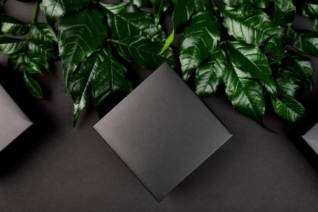 Makieta na czarne pudełko na ciemne tło z zielonymi liśćmi po bokach, płaski lay, koncepcja natury, miejsce na tekst, widok z góry.