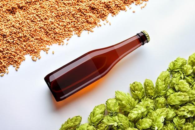 Makieta piwa brązowego z butelką rozmieszczenie po przekątnej na białym tle z pszenicy i chmielu. na szkle znajduje się półprzezroczysta etykieta. szablon gotowy do prezentacji.