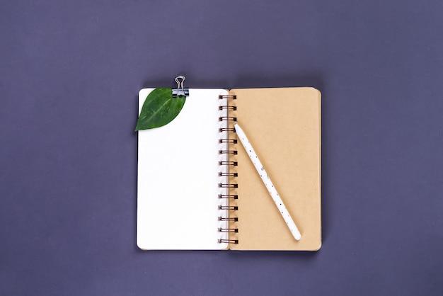 Makieta pustego papieru notatnik i zielony liść na niebiesko