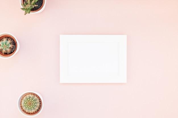 Makieta ramowa z dekoracyjnymi kaktusami