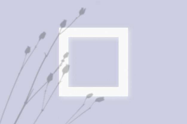 Makieta z roślinnymi cieniami nałożonymi na kwadratową ramkę z teksturą białego papieru na fioletowym tle stołu.