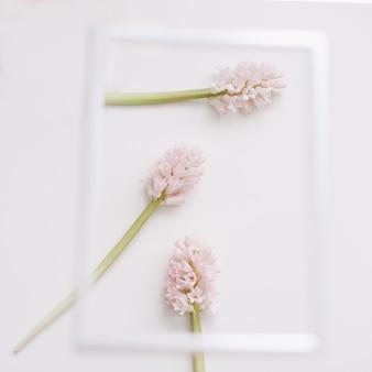 Makieta z różowymi kwiatami i pustą ramką na zdjęcia