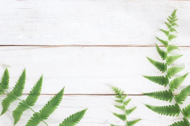 Makiety, liść paproci na białym tle drewniane deski, minimalistyczny