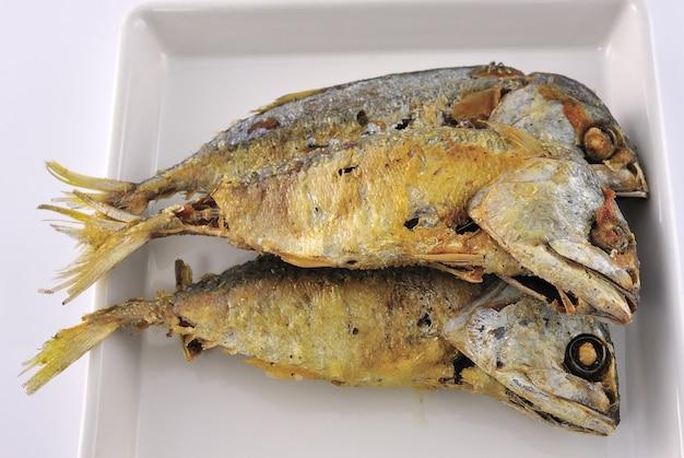 Makrela ryba na białym talerzu
