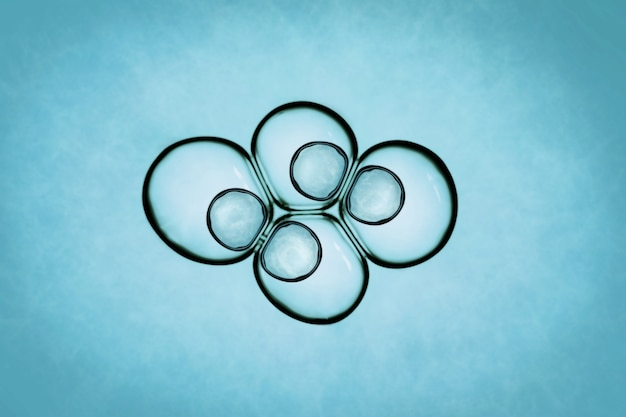 Makro z bliska baniek mydlanych wygląda jak obraz naukowy procesu podziału komórek.