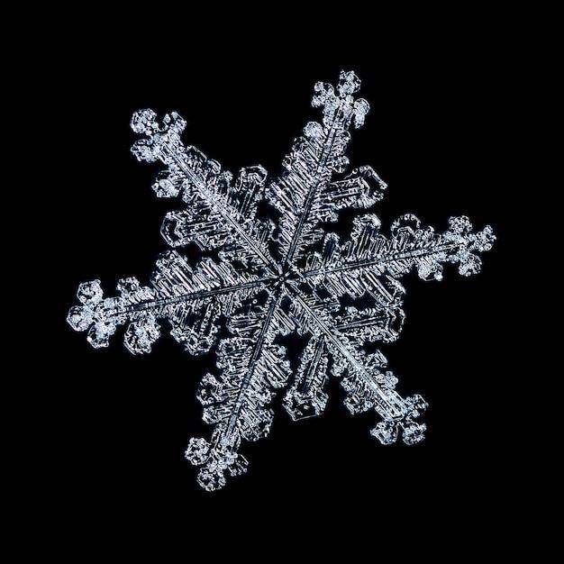 Makro zamarznięty mały płatek śniegu