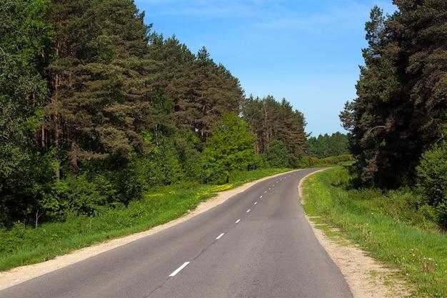 Mała asfaltowa droga biegnąca wokół lasu. wiosna