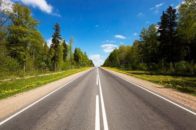 Mała asfaltowa droga przechodząca przez las. wiosna