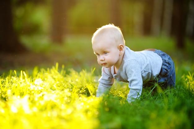Mała chłopiec przy lato pogodnym parkiem